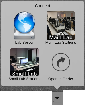Lab Server icon is one of 4 choices