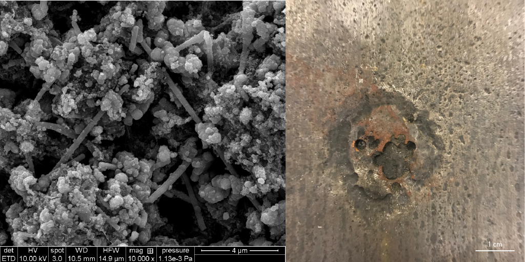 biofilm and corrosion pit
